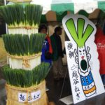 全国ねぎサミット2019inまつど&松戸大農業祭り&松戸パン祭り2019【松戸】